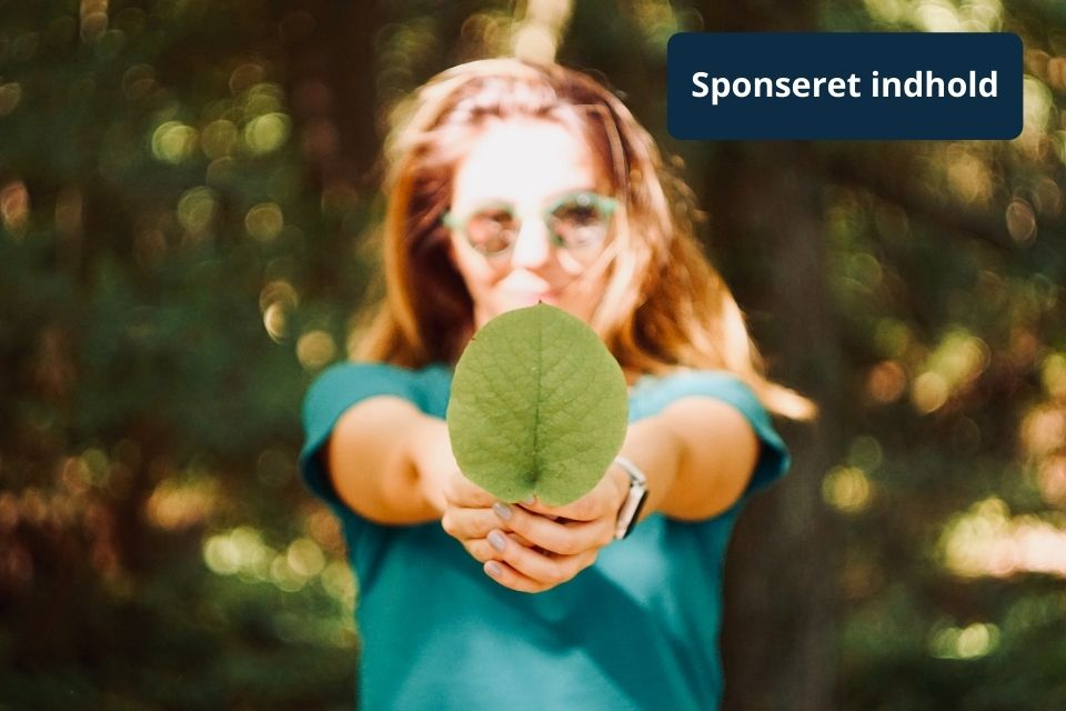 Bæredygtig investering vinder frem
